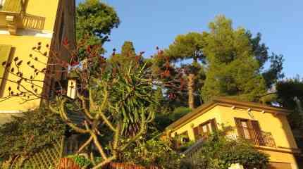 Casa indipendente su due piani con giardino, depandance e box