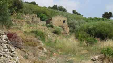 Codice:459 - Vallecrosia, rustico con terreno agricolo