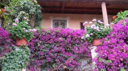 Codice:391 - Bordighera, grande villa d'epoca con ampio giardino