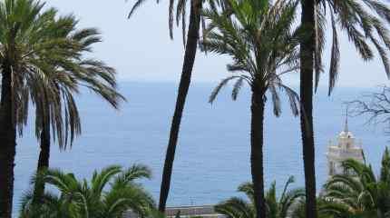 Dal palmeto spicca Villa Garnier su sfondo mare